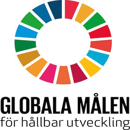 18. Genomförande och globalt partnerskap