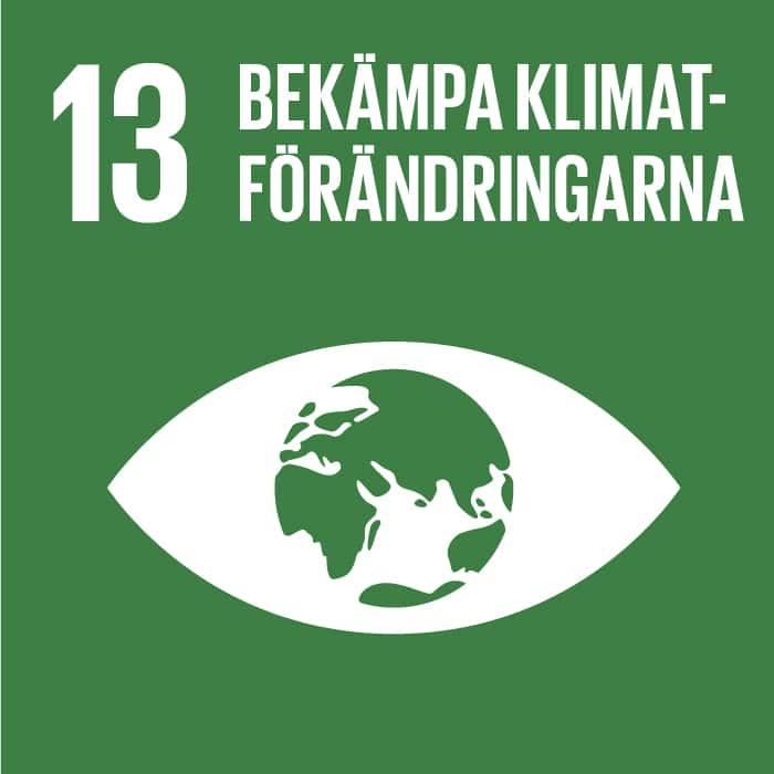 13. Bekämpa klimatförändringarna