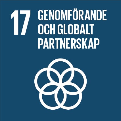 17. Genomförande och globalt partnerskap